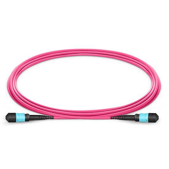 MTP Female to Female 12 Fibers OM4 50/125 Multimode Trunk Cable, Type B, Elite, Plenum (OFNP), Magenta